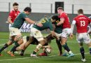 Springboks believe they can hit back against Lions