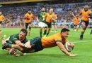 Wallabies smash error-ridden, ill-disciplined Springboks
